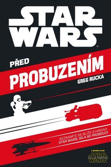 _vyr_1021SW_Pred-probuzenim_cz.jpg